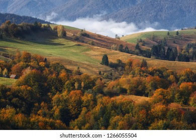 Autumn mountains and colorful forest