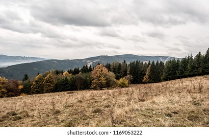 autumn mountains with mountain meadow, colorful trees, hills and clouds - on Mala Kycera hill in Moravskoslezske Beskydy mountains in Czech republic