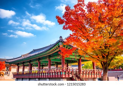 autumn at namsangol hanok traditional village at seoul south Korea
