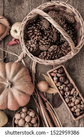 Autumn natural material. Basket with cones, pumpkin, acorns, chestnuts. Still life top view. Cozy home background.