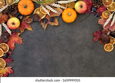 Autumn nature background border with food, flora and fauna on lokta paper background. Top view. Harvest festival theme.