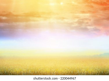 Autumn nature background with grass and beautiful Dawn sky