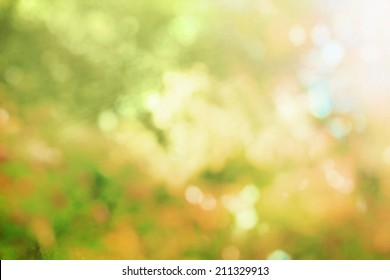 Autumn nature bokeh