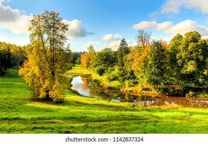 Autumn nature forest river landscape. Forest river in autumn panorama. Autumn forest river view