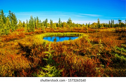 Autumn nature lake water landscape. Autumn lake nature. Autumn nature lake scene. Autumn lake landscape