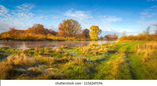 Autumn nature landscape. Amazing panorama of autumnal river shore with trees, meadow and blue sky on sunny day. Golden nature in october. Colorful leaves and grass on river bank. Scenery autumn. Fall