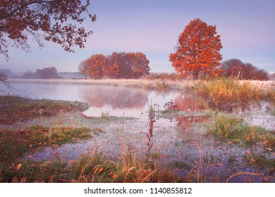 Autumn nature landscape. Colored trees on river shore in the clear morning. Scenic nature in october.