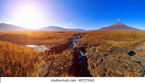 Autumn nature landscape. Nordic pine forest in Siberian mountains in Putorana national park. Nature north trees and Mountain river.