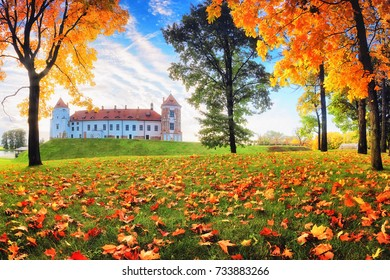 Autumn nature in park. Mir castle surrounded by colorful red and yellow maple trees.