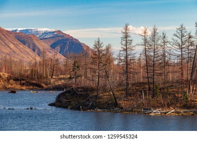 Autumn nature of the Taimyr. October 3, 2018, Norilsk Talnakh