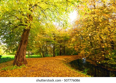 Autumn nature with a trail going through a park in autumn with colorful autumn colors in the fall