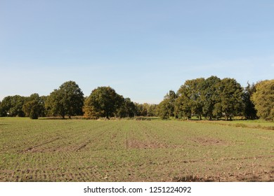 Autumn in North Brabant in Holland