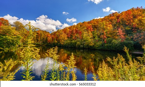 Autumn off the Blue Ridge Parkway Blue Ridge Mountains, Appalachian Mountains, North Carolina