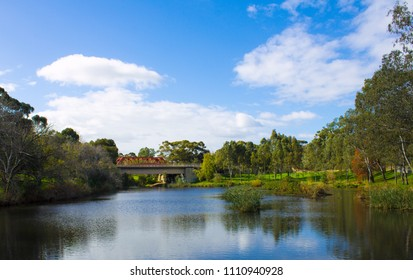 Autumn on the River Torrens