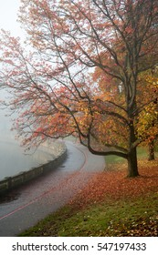 Autumn on the seawall in Stanley Park, Vancouver, British Columbia, Canada