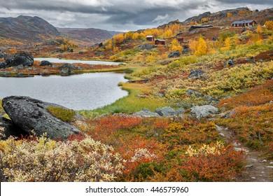Autumn on Unna Allakas in northern Sweden