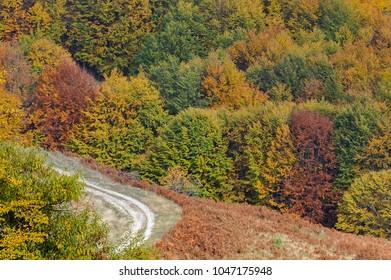 Autumn in Paiko mountain, Makedonia, Greece