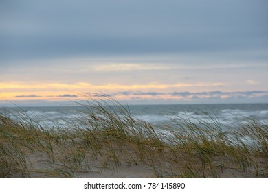 Autumn in Palanga Dunes  with Baltic sea in background and close up of weeds