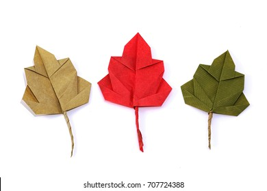 Autumn paper origami oak leaves on white background