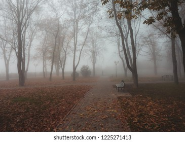 Autumn park in the fog with bench