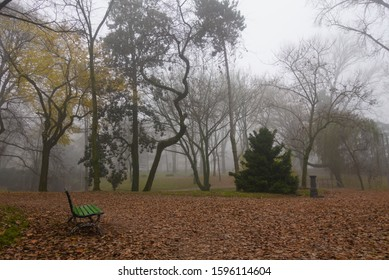 Autumn park in the fog - brown leaves on the ground, a green bench, trees in the fog