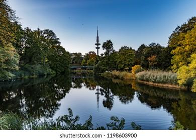 autumn in the park, hamburg