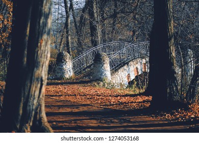 Autumn park landscape - small stoned bridge in the autumn park among the trees and dry leaves