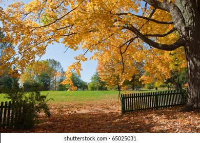 Autumn in the Park, Oakville, Ontario, Canada