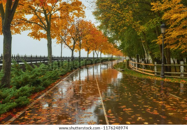 foto de parc d'automne, arrière-plan pluie, arrière-plan paysage : photo ...