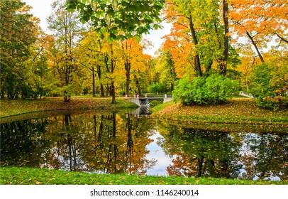 Autumn park river reflection landscape. Park river reflection in autumn season. Autumn river reflection panorama