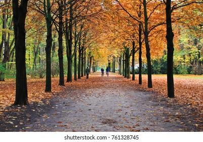 Autumn park Tiergarten in Berlin