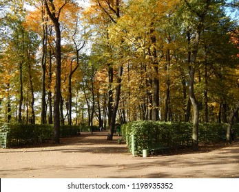 Autumn in the park, trees with bright multi-colored foliage, landscape