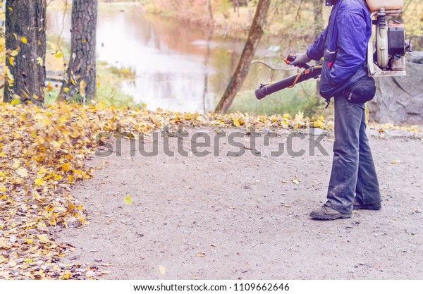 In the autumn park worker removes the road from the fallen leaves with help.
