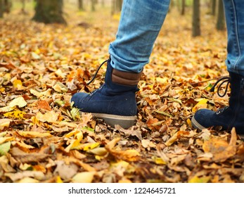Autumn park a young girl child walking between autumn yellow-orangeleaves
