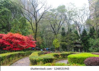 Autumn Park in Zhangjiajie