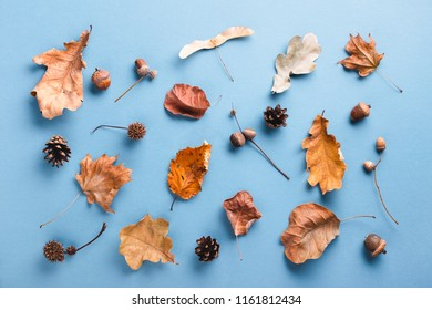 Autumn pattern made of dry leaves on blue background. Top view, autumn card concept.