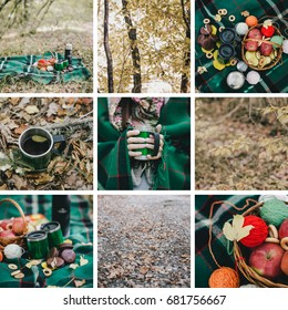 Autumn picnic with green details collage