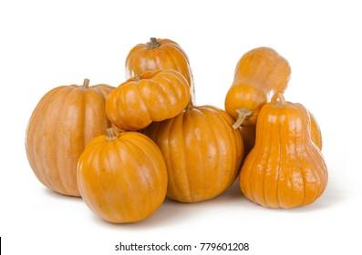 Autumn pile of Pimpkins