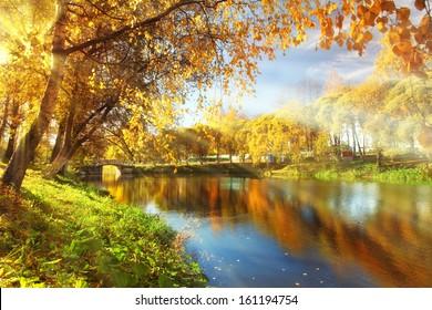Autumn at the pond park