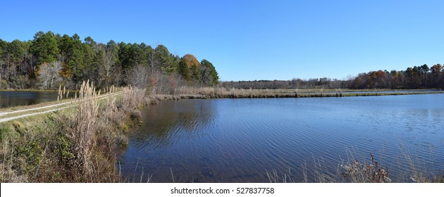 Autumn ponds in Mississippi