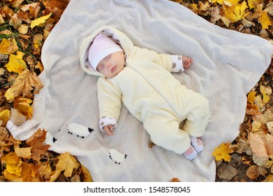 Autumn portrait of beautiful baby in the park.