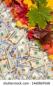 Autumn prices fall concept. Background from dollars and colored maple leaves