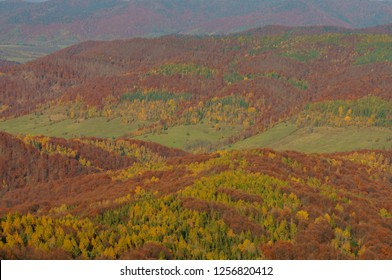 Autumn in the primeval forest. Bieszczady Mountains. Abandoned village Carynskie. Bieszczady National Park