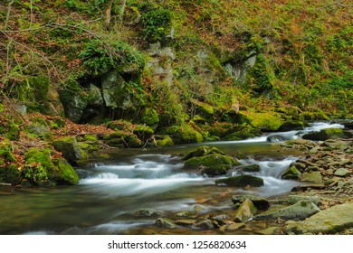 Autumn in the primeval forest. Bieszczady Mountains. Rzeka stream. Bieszczady National Park