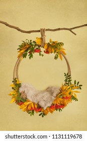autumn props for photographing newborns, pendant ring on a branch with rowan, yellow and green leaves and beige skin on a yellow background