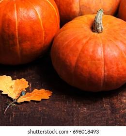 Autumn Pumpkin Thanksgiving Background concept  - orange pumpkins over wooden table macro