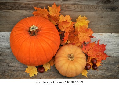 Autumn Pumpkin, Thanksgiving Background. Orange pumpkins and leaves over wooden table.