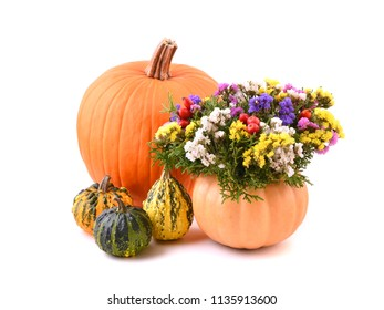 Autumn pumpkins and flowers. Pumpkin - vase decoration.