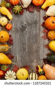Autumn pumpkins frame