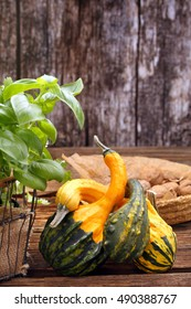 Autumn pumpkins with fresh herbs on wooden table and space for text